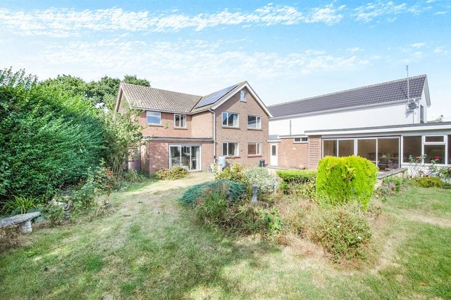Thumbnail Detached house for sale in Tiptree Road, Great Braxted, Witham
