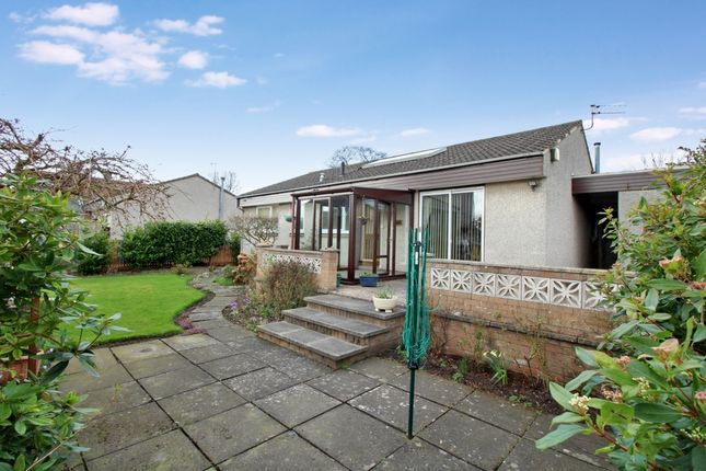 Thumbnail Bungalow for sale in Beech Avenue, Ladybank