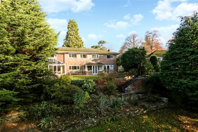 Picture No. 14 of Armitage Court, Sunninghill, Berkshire SL5