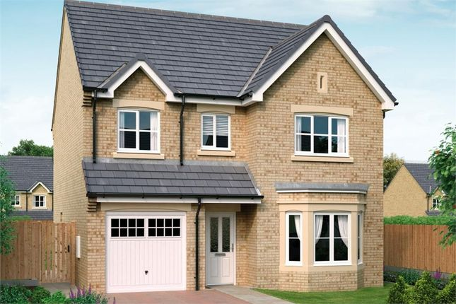 "Thumbnail Detached house for sale in ""The Glenmuir"" at Redcar Lane, Redcar"