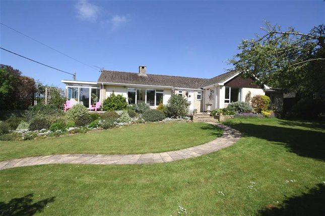 Thumbnail Detached bungalow for sale in Studley Hill, Studley, Wiltshire