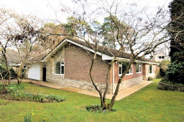 Thumbnail Detached bungalow for sale in Widworthy Drive, Broadstone