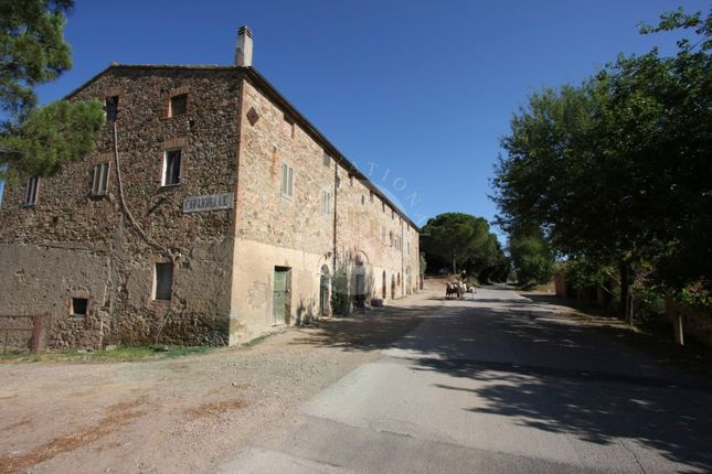 Thumbnail Commercial property for sale in Grosseto, 58100, Italy