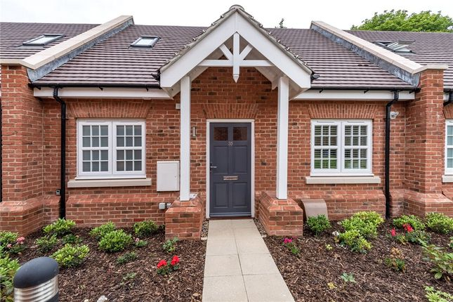 Thumbnail Bungalow for sale in Terrace Road North, Binfield, Berkshire