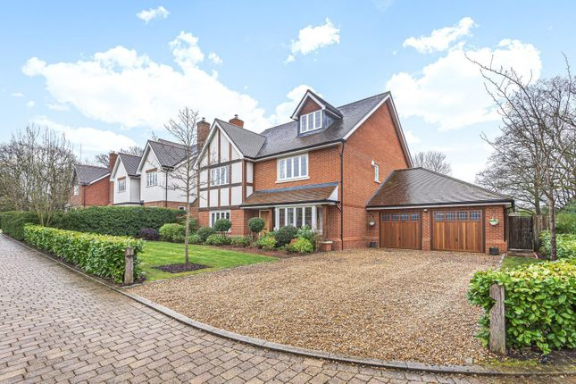 Thumbnail Detached house for sale in Canvil Place, Cranleigh