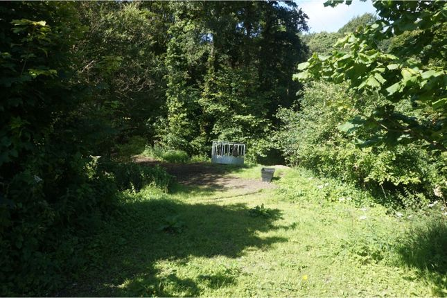 Woodland of Downing Road, Whitford, Holywell CH8