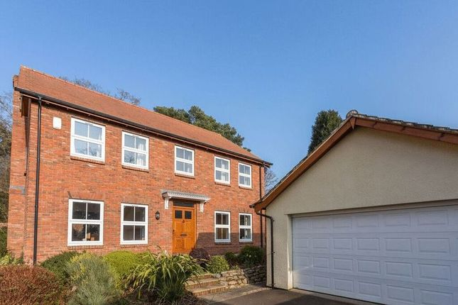 Thumbnail Detached house for sale in Monterey Park, Newton Abbot