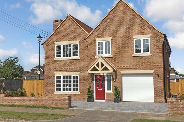 Thumbnail Detached house to rent in London Road, Ashington, Pulborough
