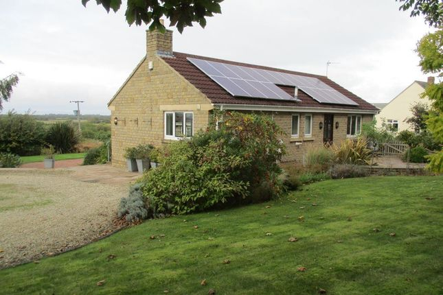 Thumbnail Bungalow to rent in Lyefield Road, Worle, Weston-Super-Mare