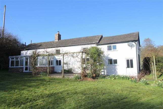Thumbnail Detached house to rent in Waterlow, Red Lane, Berriew, Welshpool, Powys