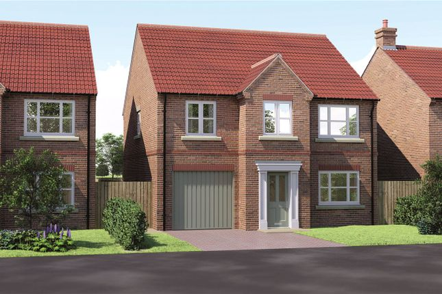 Thumbnail Detached house for sale in The Oak Manor Court, York Road, Barlby, Selby