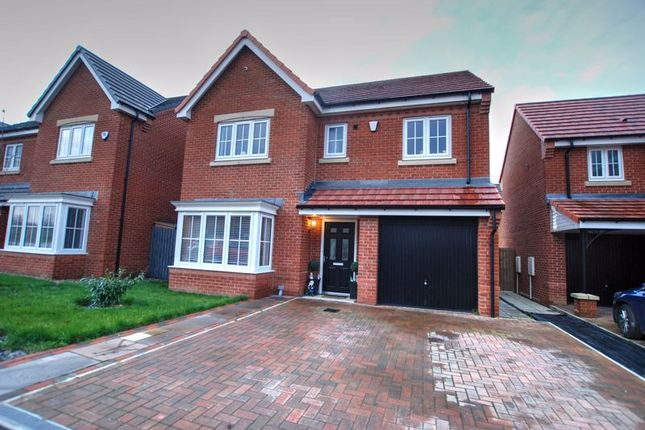 Thumbnail Detached house for sale in Daisy Close, Portland Wynd, Blyth