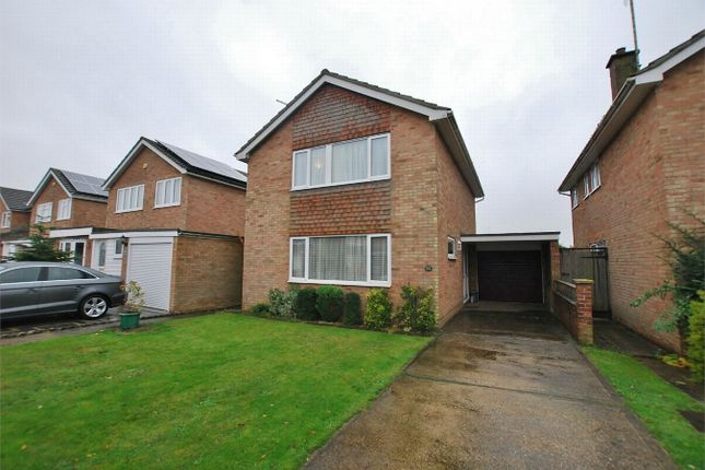 Thumbnail Detached house to rent in Domsey Bank, Marks Tey, Essex