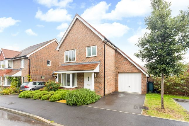 Thumbnail Detached house to rent in Cowslip Drive, Lindfield, Haywards Heath