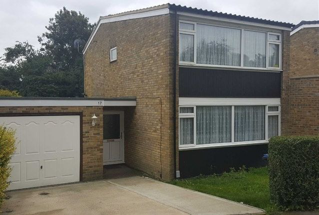 Thumbnail Detached house for sale in Thrush Avenue, Hatfield