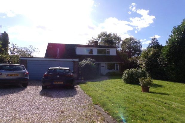 Thumbnail Bungalow to rent in Snitterfield Road, Bearley, Stratford-Upon-Avon
