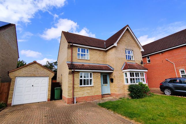 Thumbnail Detached house to rent in Columbine Road, Horsford, Norwich