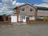 Thumbnail Semi-detached house to rent in Rookswood, Morpeth