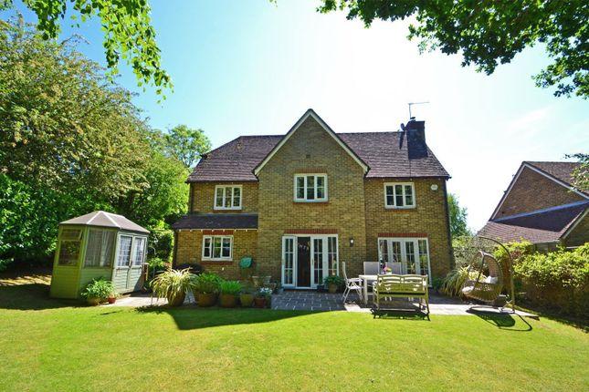 Rear Elevation of Backing Onto Woodland, Ashington, West Sussex RH20