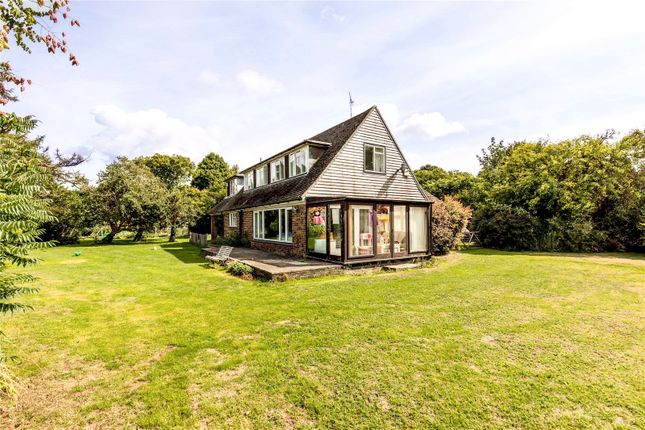 Thumbnail Detached house for sale in Rew Lane, Chichester, West Sussex