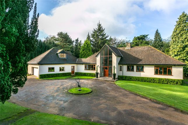 Thumbnail Detached house for sale in Hall Lane, Sutton, Macclesfield, Cheshire