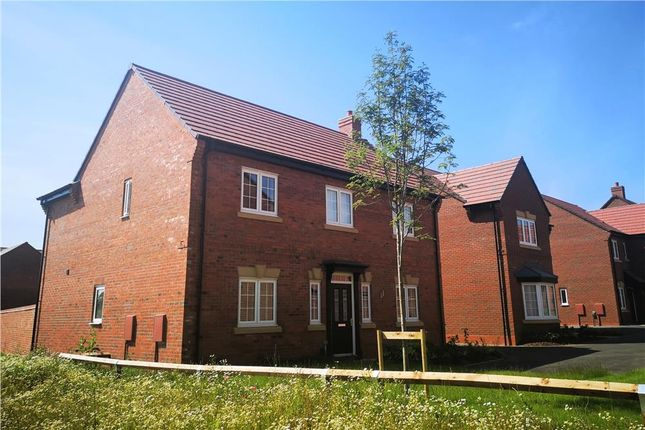 "Thumbnail Detached house for sale in ""Birchwood"" at Burton Road, Streethay, Lichfield"