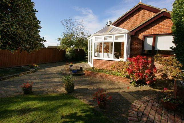 Thumbnail Detached bungalow for sale in Huntick Road, Lytchett Matravers, Poole