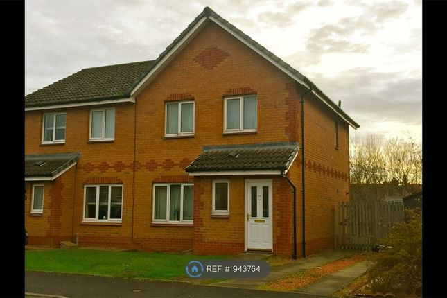Thumbnail Semi-detached house to rent in Buller Crescent, Blantyre, Glasgow