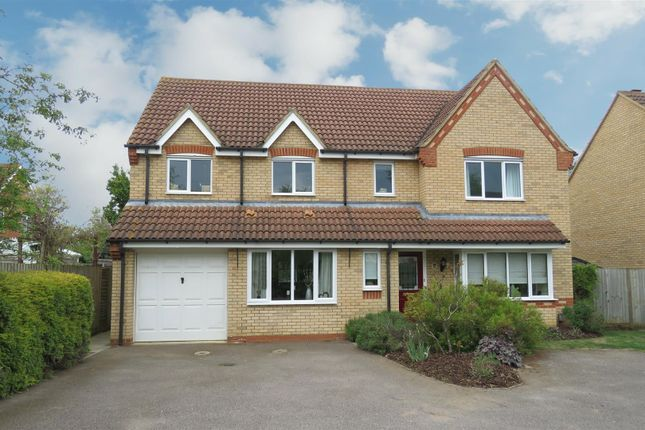 Thumbnail Detached house for sale in Fennel Drive, Biggleswade