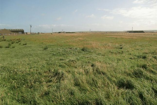 Photo 2 of Plots For Sale Scarfskerry, Thurso, Caithness KW14