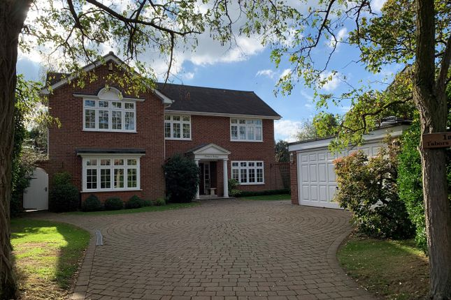 Thumbnail Detached house for sale in Lodge Avenue, Great Baddow, Chelmsford