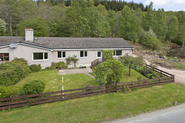 Thumbnail Bungalow for sale in Strath Tummel, Pitlochry