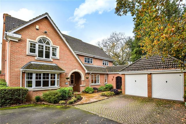 Thumbnail Detached house for sale in The Maultway, Camberley, Surrey