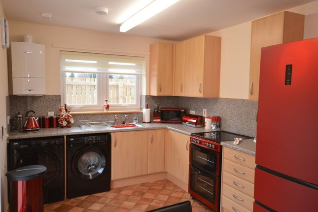 Thumbnail Semi-detached house to rent in Foresters Way, Inverness