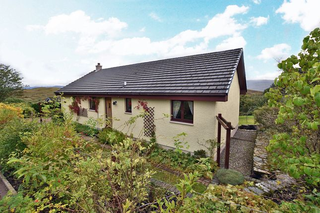 Thumbnail Detached bungalow for sale in Kilchrenan, Taynuilt