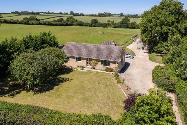 Thumbnail Detached bungalow for sale in Fifehead St. Quintin, Sturminster Newton, Dorset