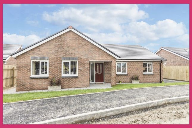 Thumbnail Detached bungalow for sale in Plot 2, Maes Y Llewod, Bancyfelin