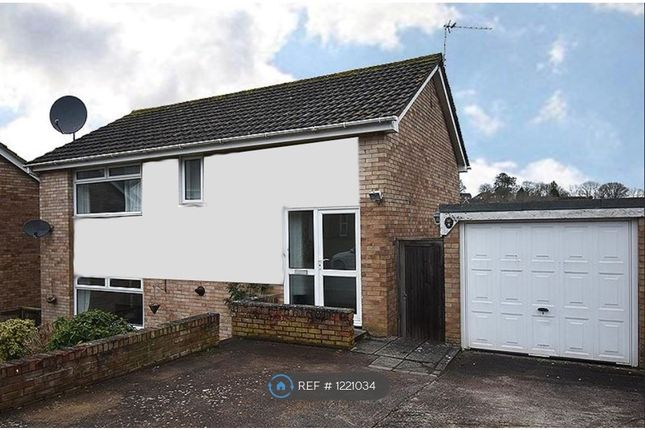 Thumbnail Detached house to rent in Mayflower Avenue, Exeter