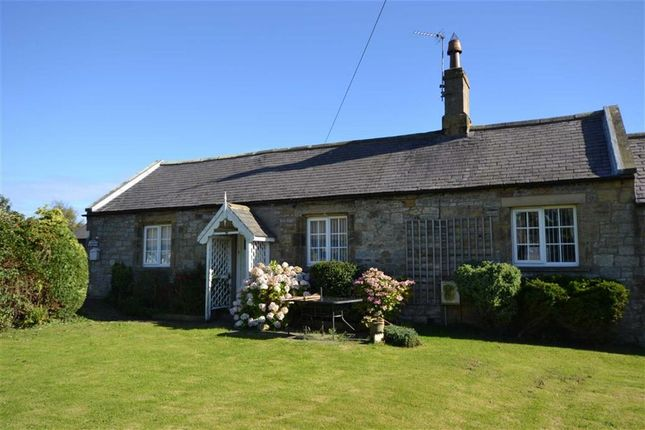 Thumbnail Semi-detached house for sale in Breezes Cottage, Longhoughton, Northumberland