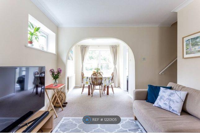 Thumbnail Semi-detached house to rent in Midhurst Close, Cambridge