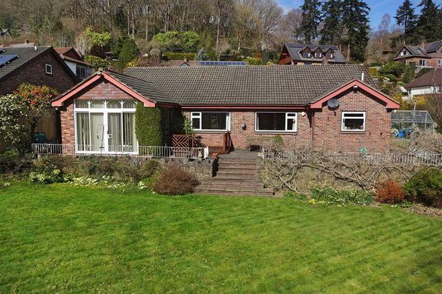 Thumbnail Bungalow for sale in Llwyn Bedw, 2, Plas Hafren, Milford Road, Newtown, Powys