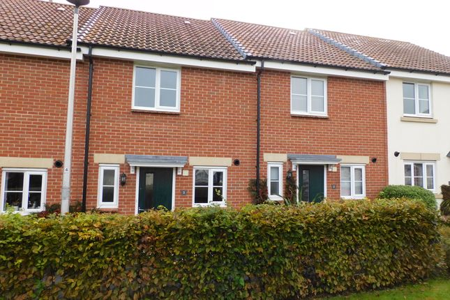 2 bed terraced house to rent in Tigers Way, Axminster EX13
