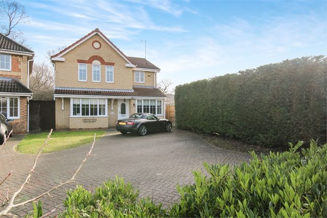 Thumbnail Detached house for sale in Scott Drive, Wickford, Essex