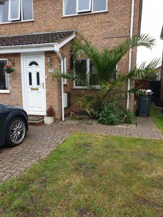 Thumbnail Semi-detached house to rent in Evesham Close, Bournemouth