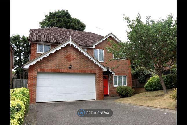 Thumbnail Detached house to rent in Cottage Close, Watford
