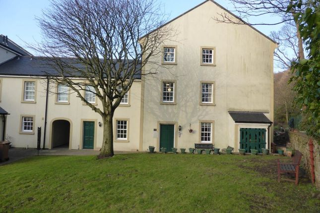 Thumbnail Property to rent in Acton Court, Whitehaven