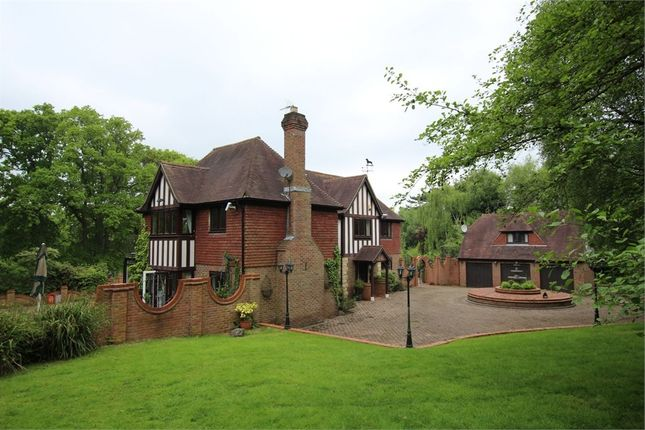 Thumbnail Detached house for sale in Chowns Hill, Hastings, East Sussex