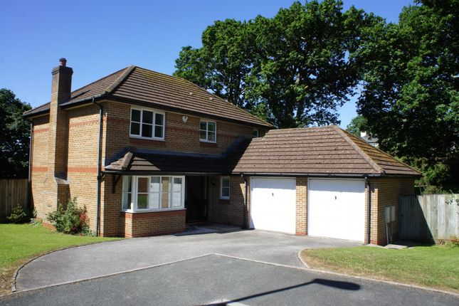 Thumbnail Detached house to rent in Cotsland Road, Truro