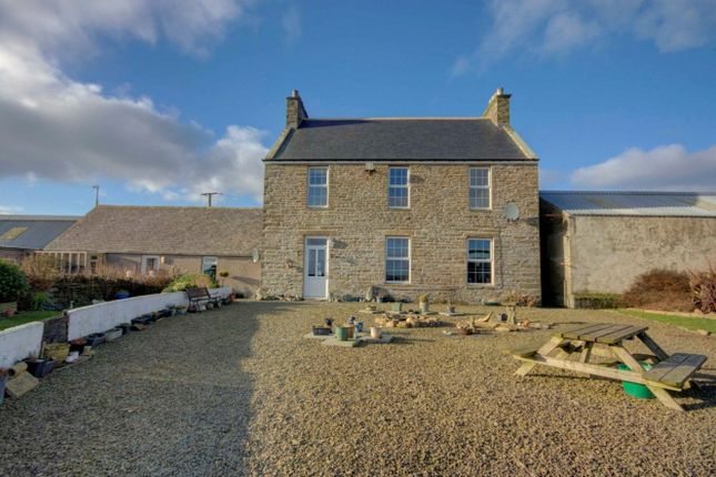 Thumbnail Detached house for sale in Backaskaill Farmhouse, Sanday, Orkney