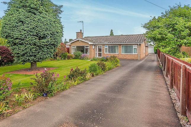 3 bed detached bungalow for sale in Branches Lane, Holbeach, Spalding